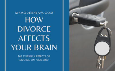The Stressful Effects of Divorce On Your Brain
